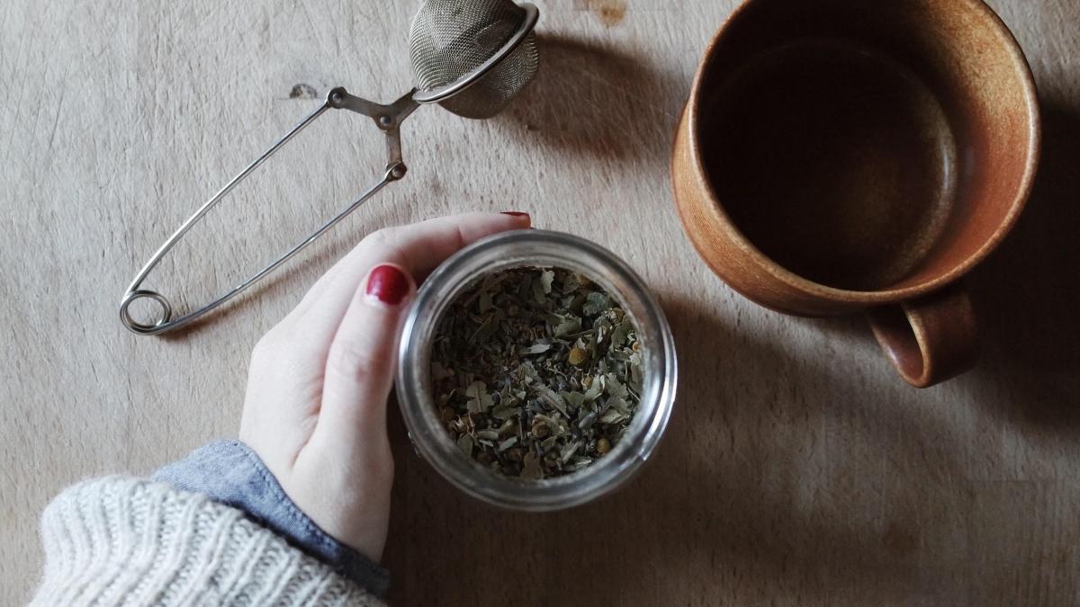 Pasos para cultivar y recolectar té en casa