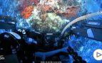 Arrecife coral Australia