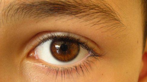 Mecanismo de nuestros ojos