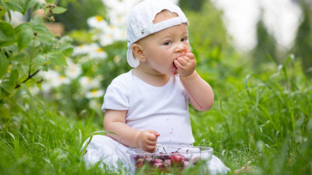 Descubre los alimentos que tienen un mayor riesgo de asfixia en bebés y niños pequeños
