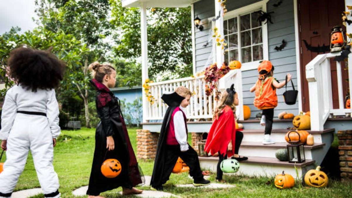 Todos los pasos para poder hacer un túnel del terror en casa para los niños por Halloween