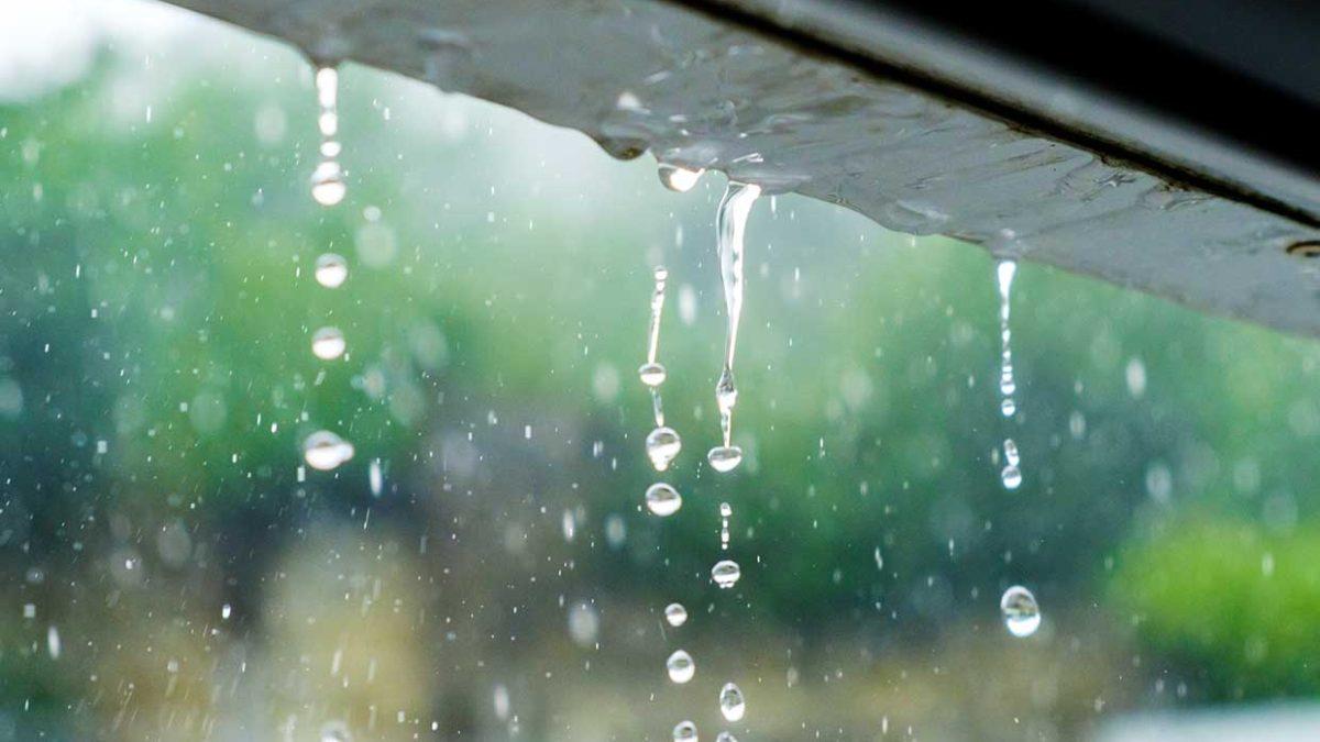 Qué hacer un día de lluvia
