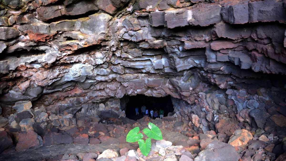 Lugares naturales: Cueva de los Verdes en Canarias