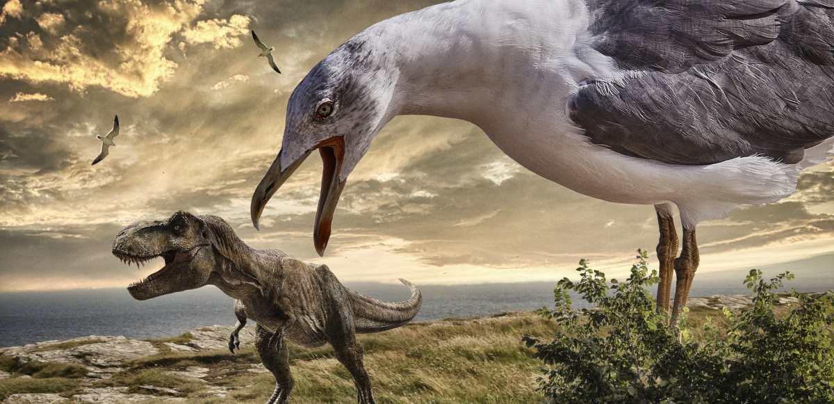 Pluma de dinosaurio