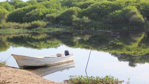 Humedales costeros. importancia biológica