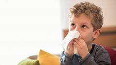 Descubre toda la información sobre la sinusitis en los niños