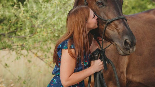 Premios y golosinas para caballo