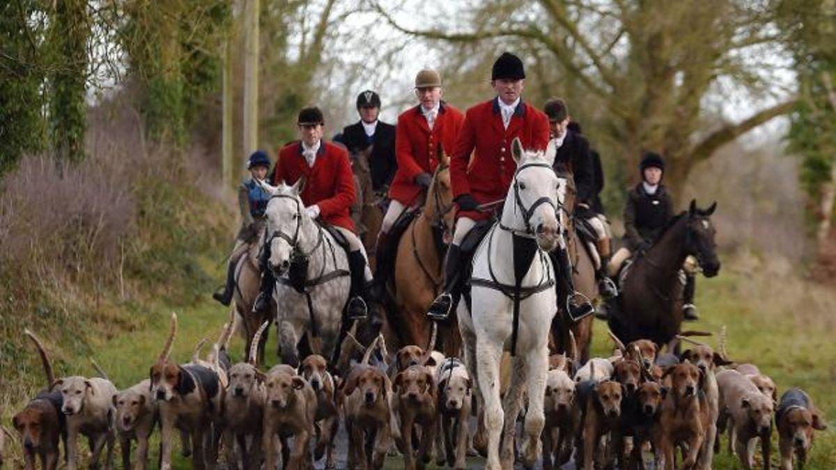 El 18 de noviembre de 2004 el Parlamento Británico vota para poner fin a la caza del zorro