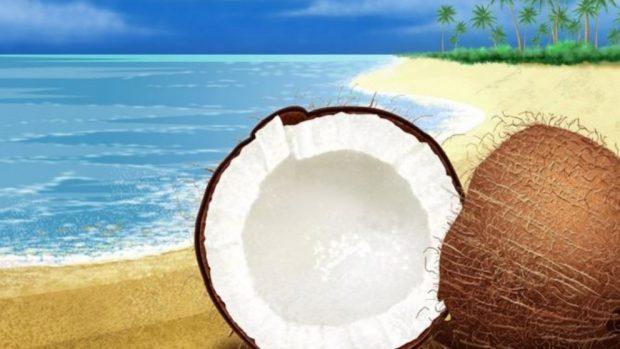 ¿El aceite de coco ayuda a adelgazar?