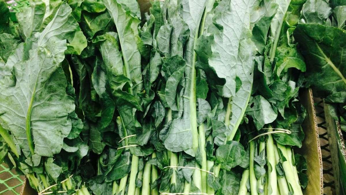 Las acelgas son una de las verduras más beneficiosas para la salud