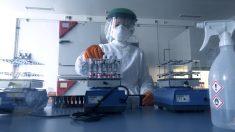 Andalucía suma 74 muertes por coronavirus en 24 horas y 1.864 casos