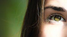 Funciones del optometrista