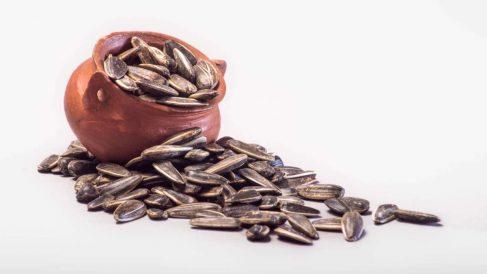 Receta de pipas tijuana saludable