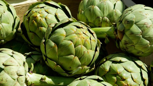 cultivar alcachofas