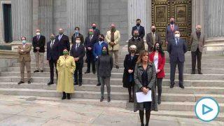 Diputados y diputadas de Vox se concentran en la Puerta de los Leones del Congreso con motivo del 25N, Día Internacional de la eliminación de la violencia contra las mujeres. Foto: EP