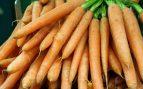 ¿Qué son los betacarotenos y qué beneficios aportan para la salud?