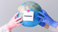Pandemias y maltrato al planeta