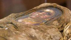 El estudio que ha revelado que se «escondía» tras la momia egipcia de una «mujer»