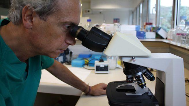 25 años haciendo investigación: una historia entre pandemias, del sida a la COVID-19