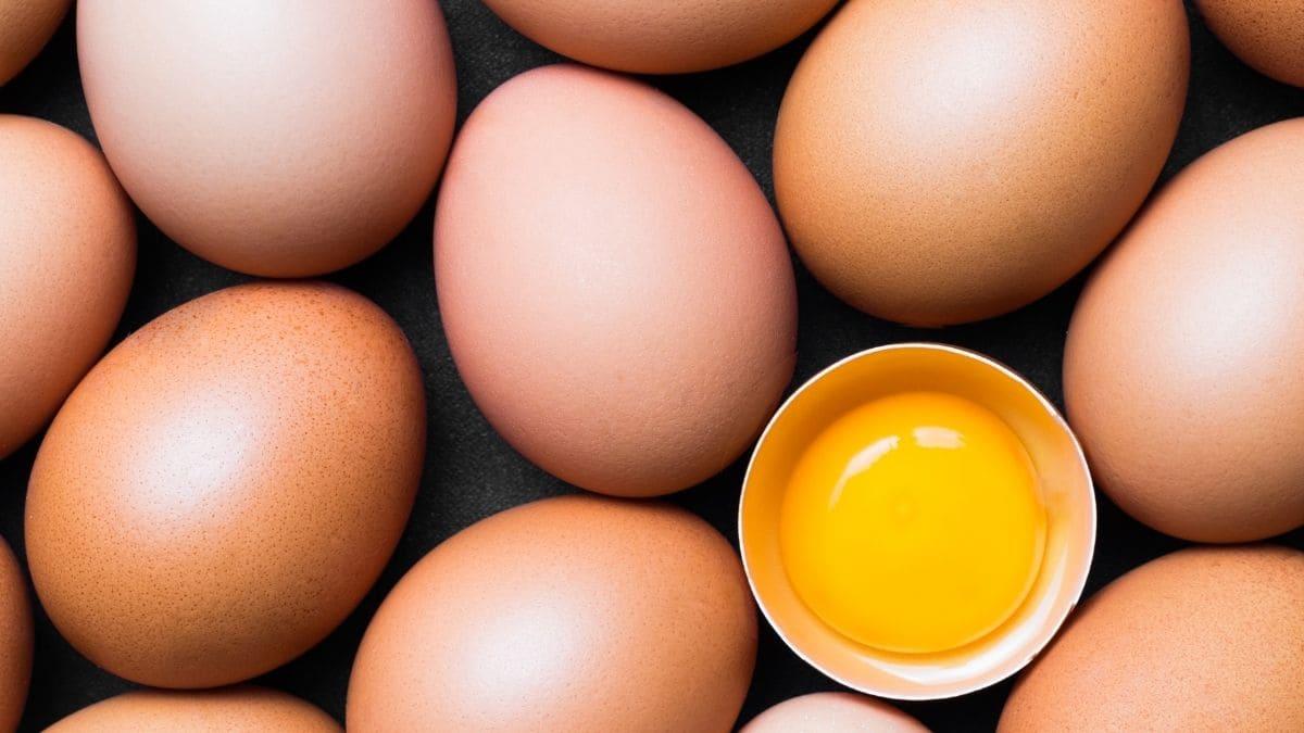 Cómo saber si un huevo es fresco