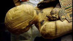 Descubrimientos sobre momias