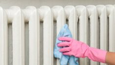 Pautas y consejos para proceder correctamente a la hora de limpiar y purgar nuestros radiadores