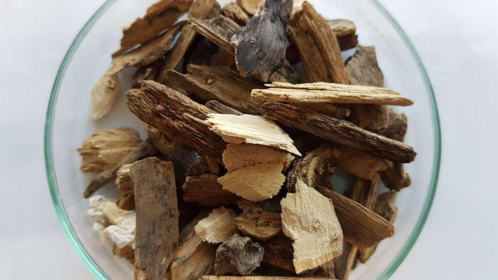 Carbón y biomasa