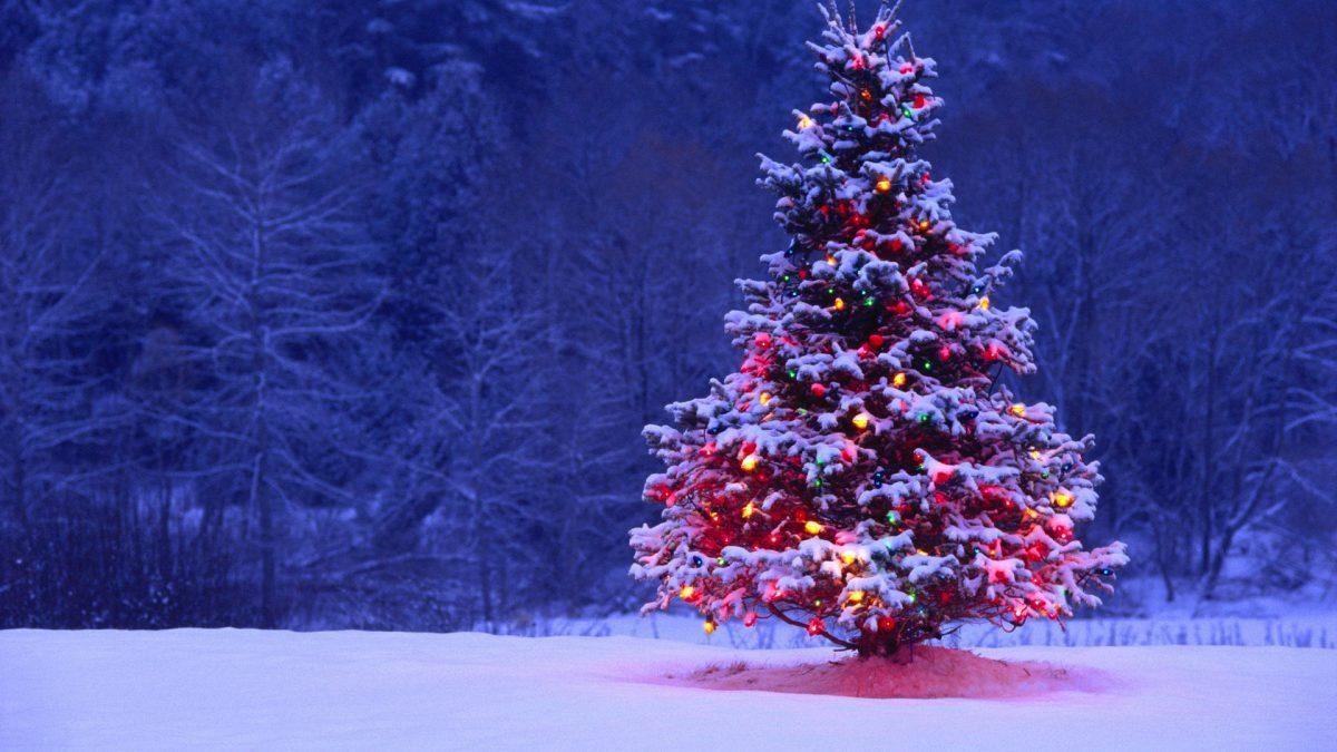 Una Navidad diferente