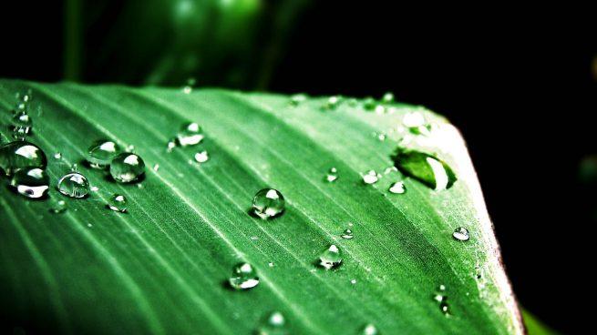 Planeta verde, hidrógeno