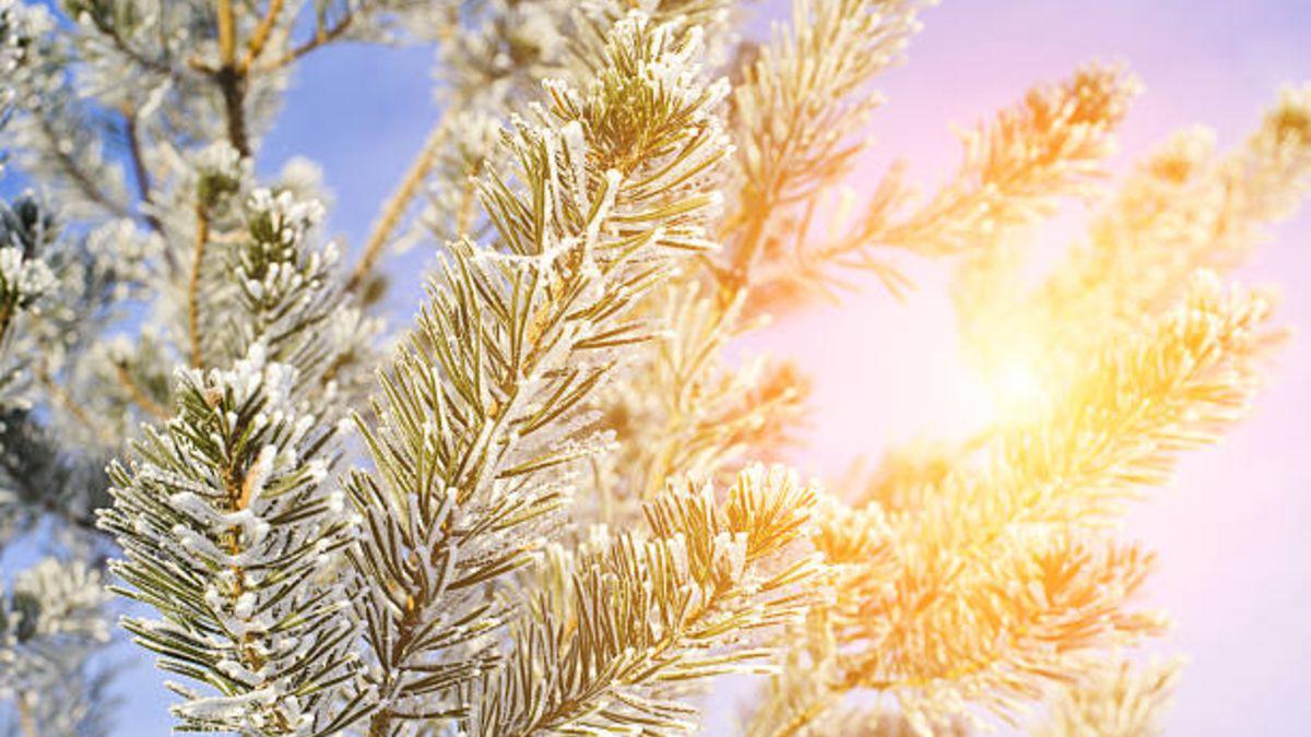 Todo sobre el comienzo de este invierno 2020 y los fenómenos astronómicos que vamos a poder experimentar