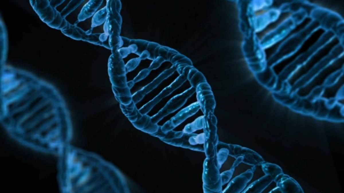 Epigenoma, cambios en genes