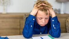 Pautas básicas para conseguir mantener la atención de los niños para hacer los deberes y tareas