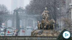 La Cibeles en Madrid, este jueves.