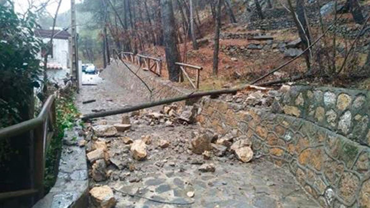 Un ejemplo de los destrozos causados por la borrasca Filomena en la comunidad andaluza.
