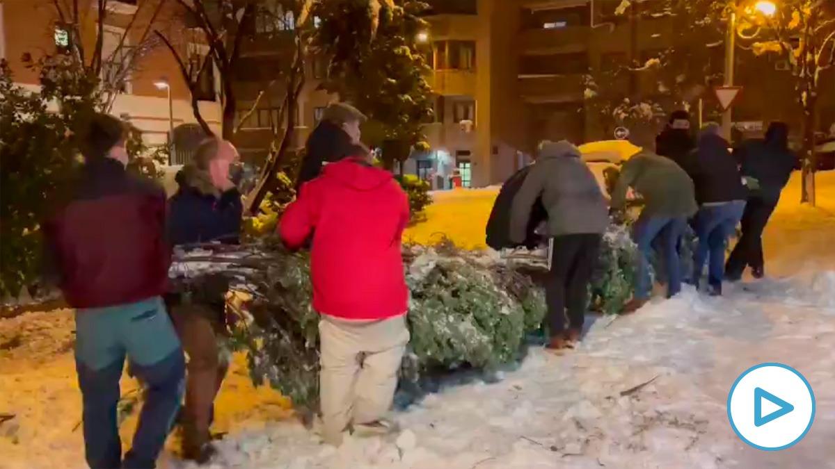 Madrileños acuden a la llamada de la presidenta Ayuso y limpian las calles voluntariamente.