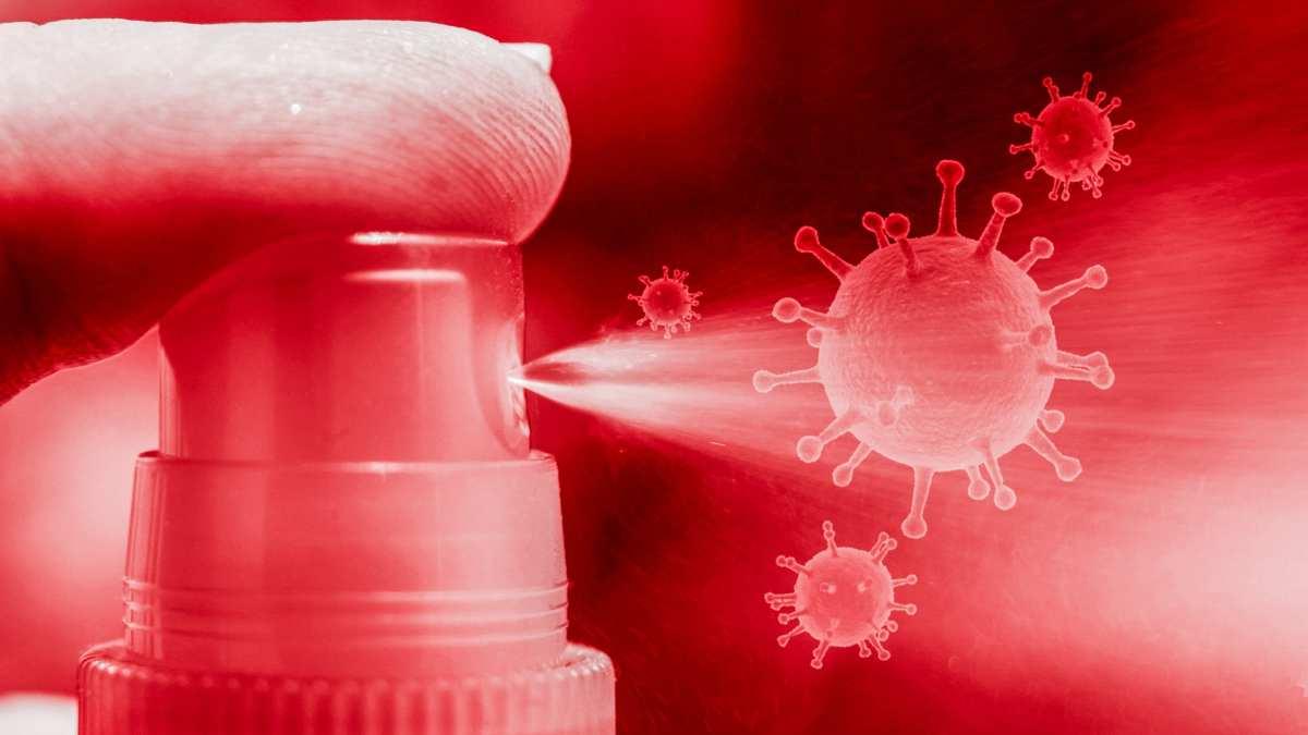 Los virus gigantes