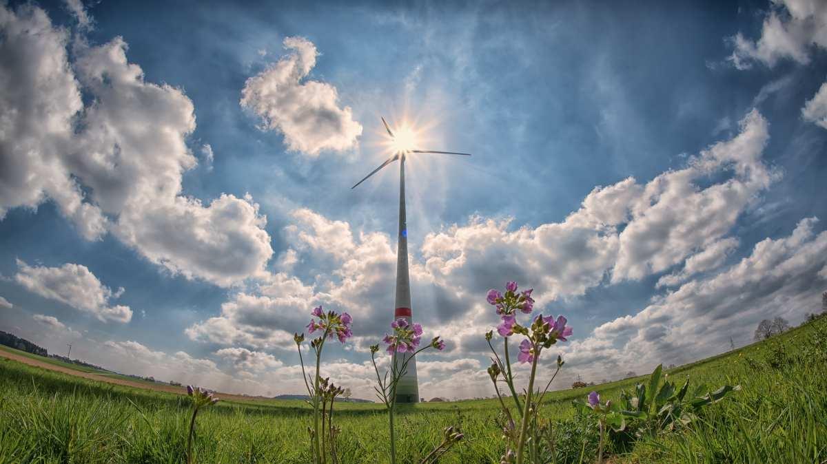 12 proyectos eólicos y solares.