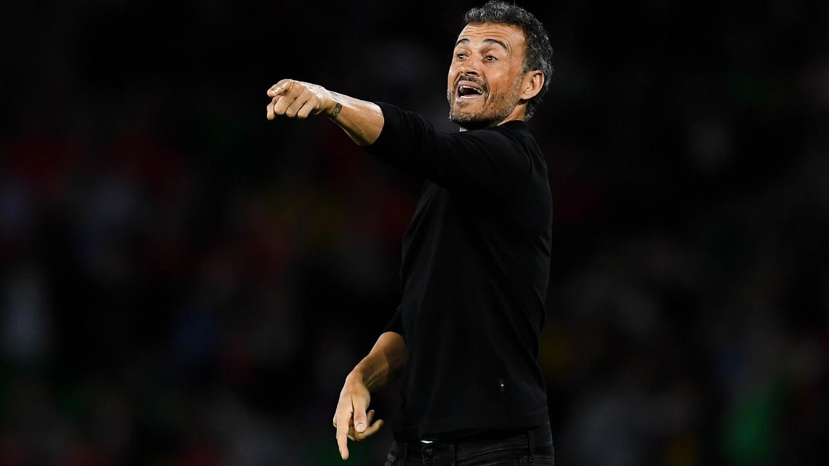 Luis Enrique, durante un partido de la selección. (AFP)