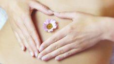 ¿Qué comer en cada una de las fases el ciclo menstrual?