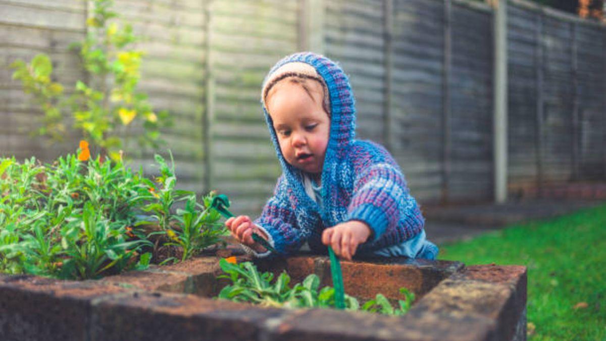 Descubre cómo cultivar un huerto con el bebé y qué beneficios tiene