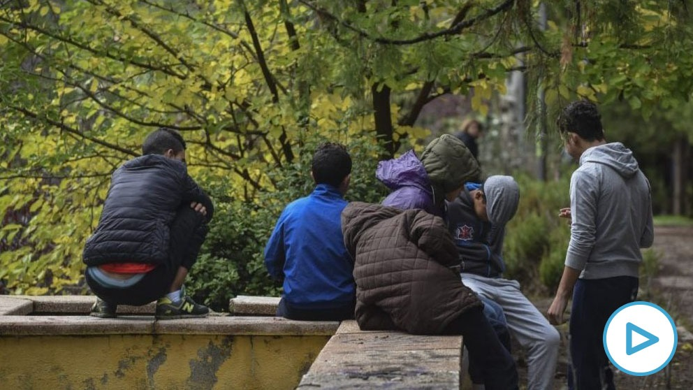 La directora general de Protección a la Infancia y la Familia del Gobierno de Canarias, Iratxe Serrano, de Podemos, ha revelado en una charla telemática sobre Inmigración con otros miembros del partido morado que en los últimos 14 meses...