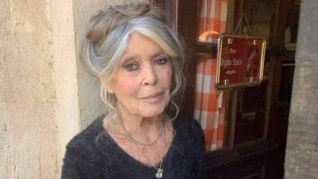 """Brigitte Bardot incendia las redes: """"El coronavirus es bueno, regula la superpoblación"""""""