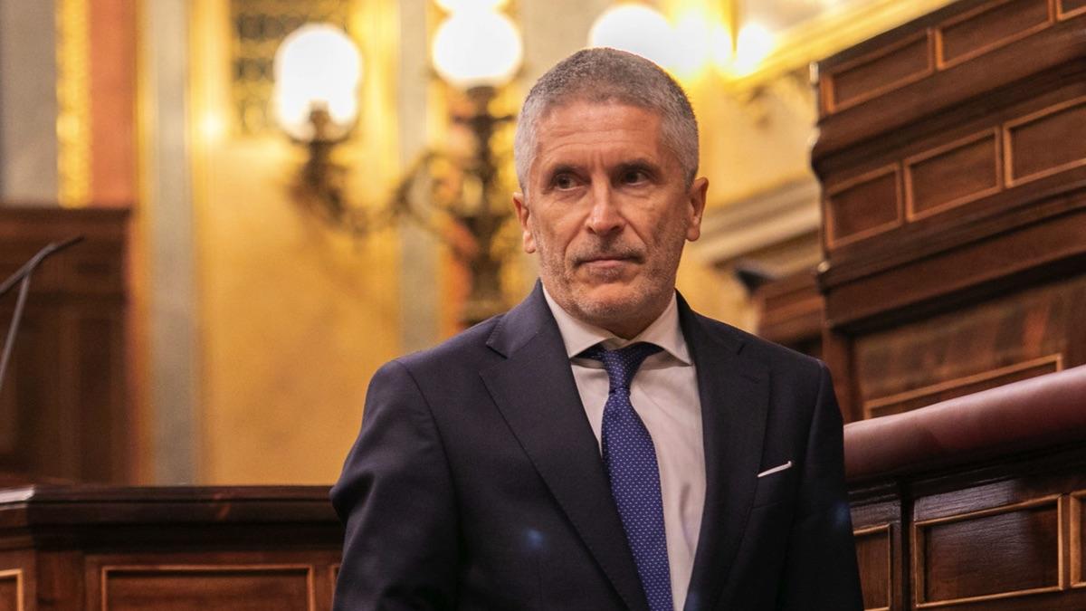 El ministro del Interior, Fernando Grande-Marlaska, en el Congreso. (Foto: PSOE)