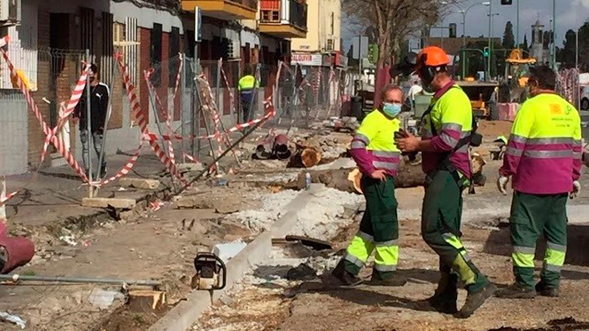 Obras en la avenida de Doctor Fedriani de Sevilla.
