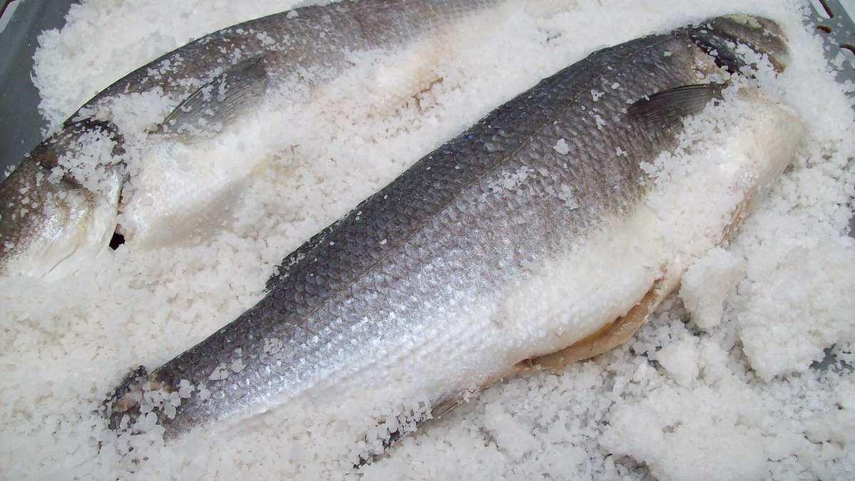 Pescado blanco_ lista de pescados y propiedades