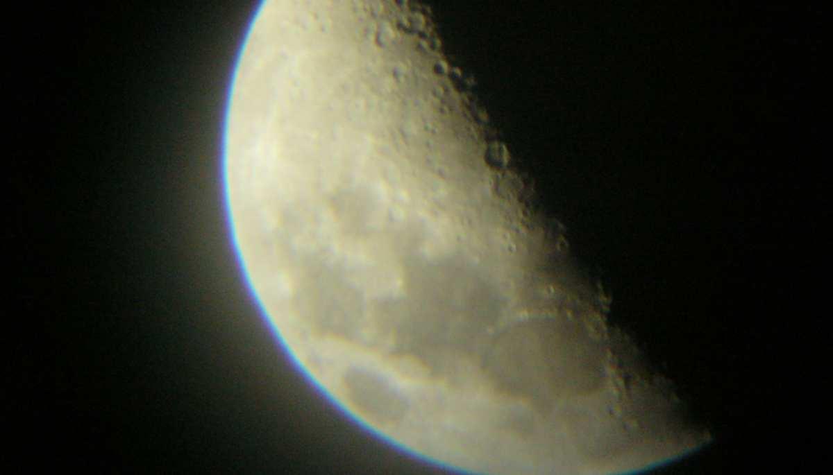 Fases de la luna y jardín