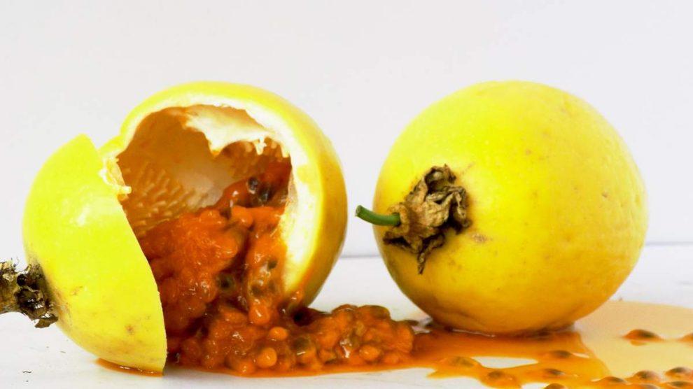 Maracuyá: propiedades, usos, beneficios y contraindicaciones de la fruta de la pasión