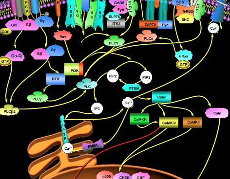 Inositol, principio activo para la salud, ¿en qué consiste y para qué sirve?