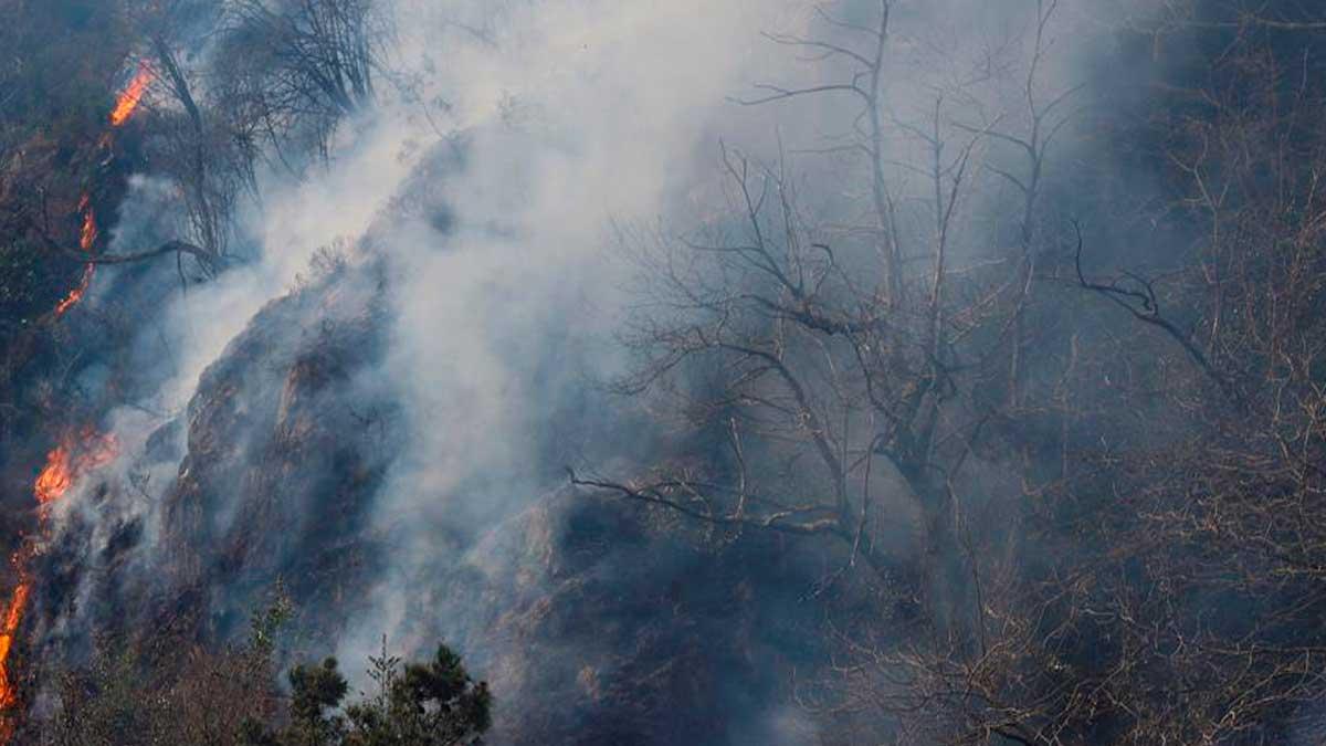 Vista de un foco del incendio forestal que afecta al norte de Navarra y Guipúzcoa este domingo en Endarlatsa (Guipúzcoa), que actualmente se encuentra «estabilizado» en la parte guipuzcoana. Foto: EFE