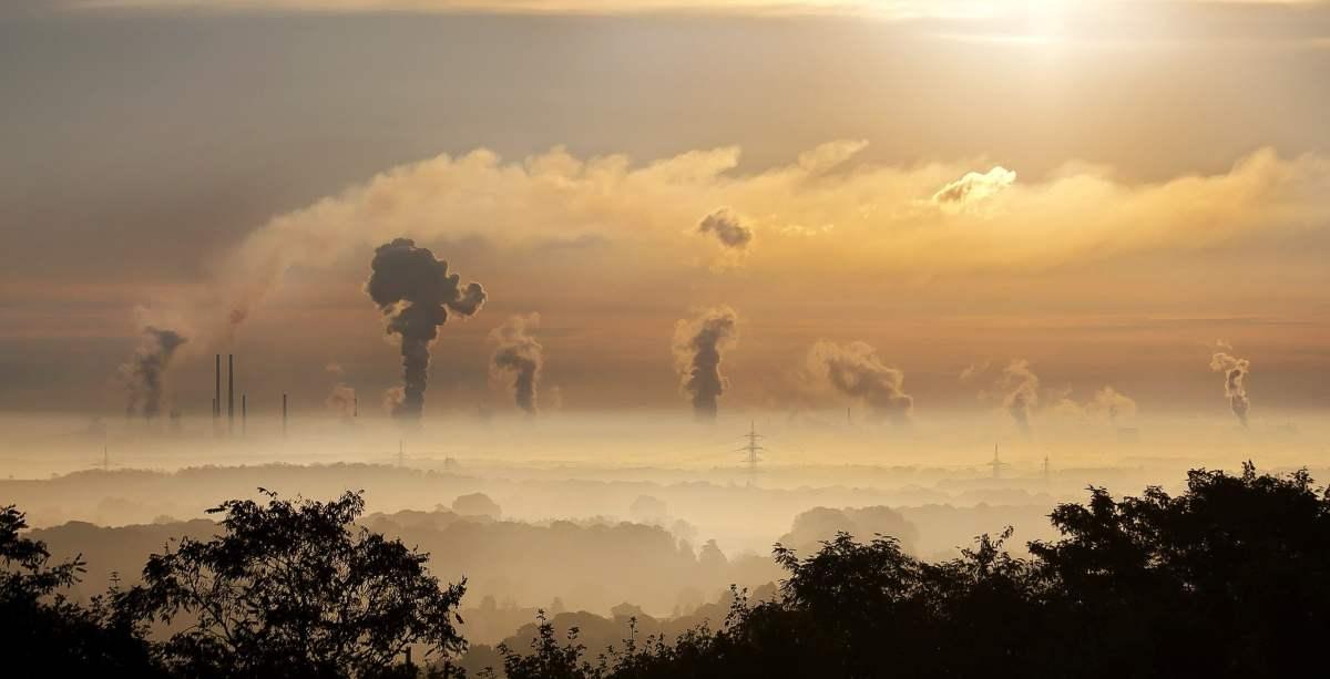 Acciones por el clima